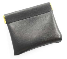 Earpiece Pouch